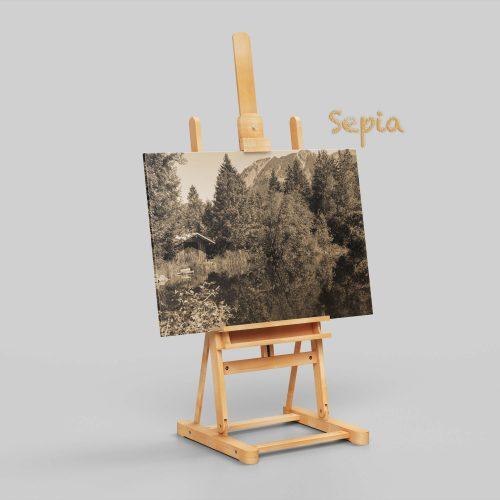 Moorweiher auf Leinwand Sepia | Allgäu Deko